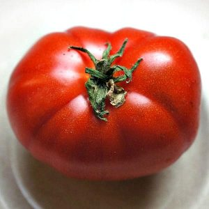 Tomato - Super Dwarfs
